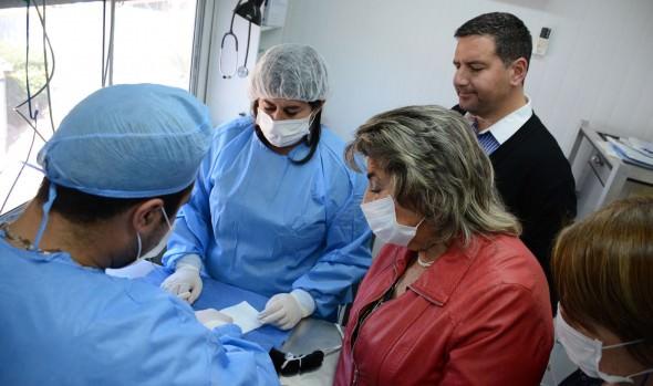 Programas de esterilización de mascotas ejecutados por el municipio de  Viña previenen el nacimiento de 1 millón de perros y gatos