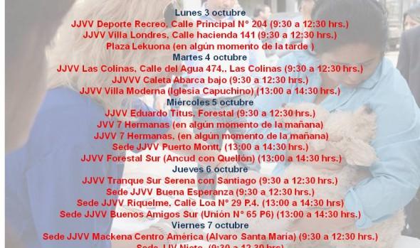 Municipalidad de Viña del Mar informa calendario de desparasitacion contra la garrapata de esta semana
