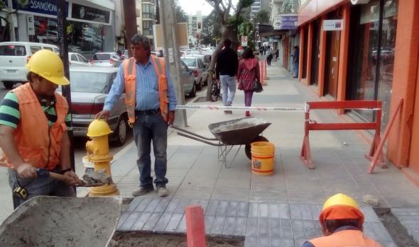 Reposición de aceras en calle Ecuador presenta 70% de avance informó municipio de Viña del Mar