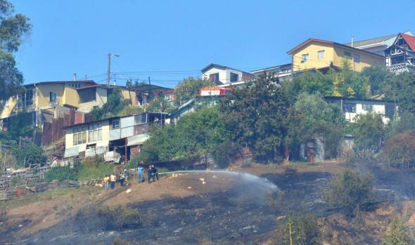 Alcaldesa Virginia Reginato reiteró llamado a la comunidad a apoyar medidas para prevenir incendios forestales