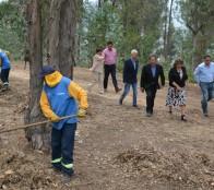 Municipio de Viña del  Mar refuerza acciones para minimizar riesgos en incendios forestales