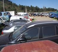 Municipio de Viña del Mar rematará 160 vehículos el 24 de febrero