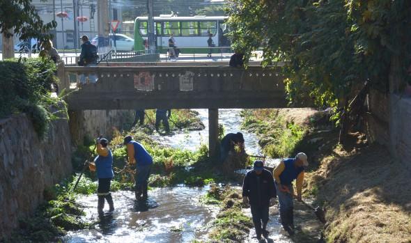 Municipio de Viña del Mar avanza en la limpieza de cauces para enfrentar el invierno