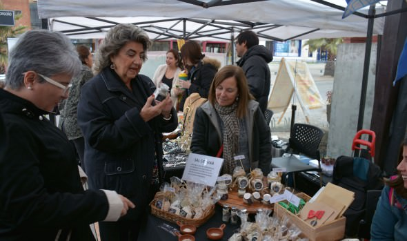 Municipio de Viña del Mar ofrece talleres gratuitos para el mes  de la Mamá