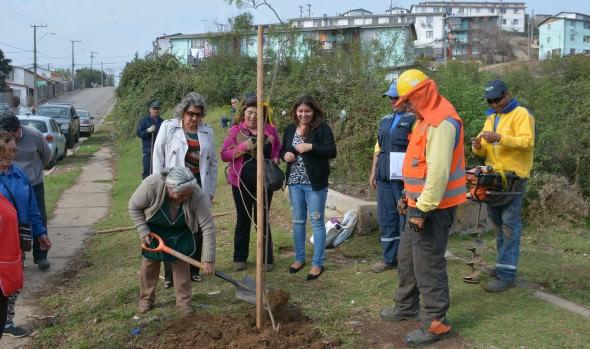 Municipio de Viña del Mar intensifica programa de erradicación  de microbasurales