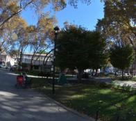 Municipio de Viña del Mar adjudicó mejoramiento de iluminación para sector de plaza Forestal