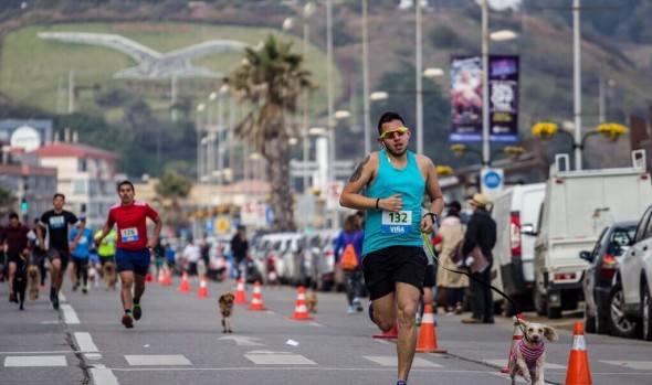 Con gran número de participantes, municipio de Viña del Mar realizó en Reñaca primera perrorunning  2017
