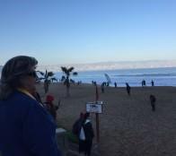 Novedosa fecha por la arena tuvo Corrida familiar  en Reñaca