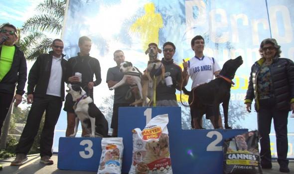 Más de 300 canes participaron en segunda fecha de Perrorunning  en Viña del Mar