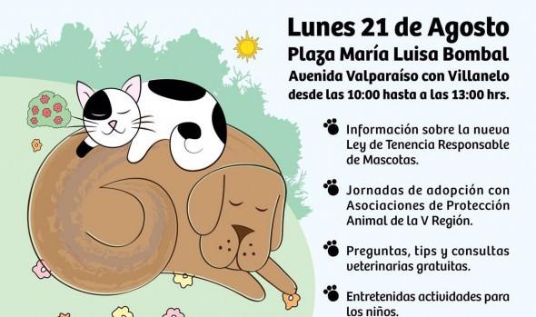 Municipio de Viña del Mar realizó jornada para fomentar la  tenencia responsable de mascotas