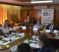 Operativos conjuntos de fiscalización al comercio ambulante ilegal continuarán en Viña del Mar