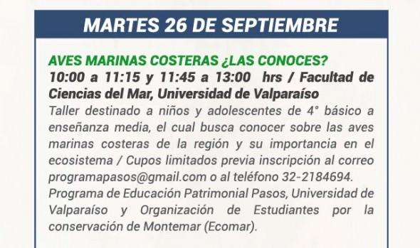 Municipio de Viña del Mar y Universidad de Valparaíso invitan a estudiantes a descubrir el mundo de las aves costeras