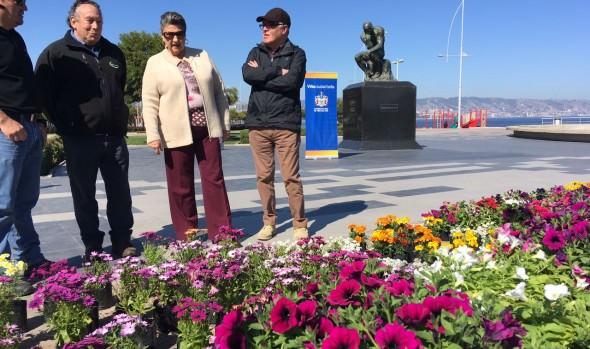 Con recambio floral, municipio de  Viña del Mar da la bienvenida  a la primavera