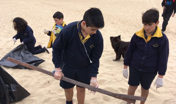 Municipio de Viña del Mar se sumó al día internacional de limpieza de playas