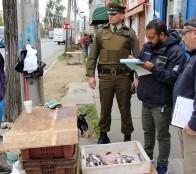 Municipio de Viña del Mar  y Gobernación provincial realizaron operativo de fiscalización al comercio ambulante ilegal