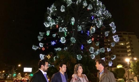 Encendido de luces ornamentales en Viña del Mar  marca el inicio de fiestas de fin de año y temporada estival