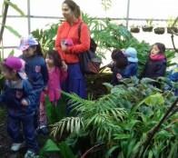 Municipio de Viña del Mar  y Jardín Botánico Nacional enseñó a más de 600 niños qué es Patrimonio natural