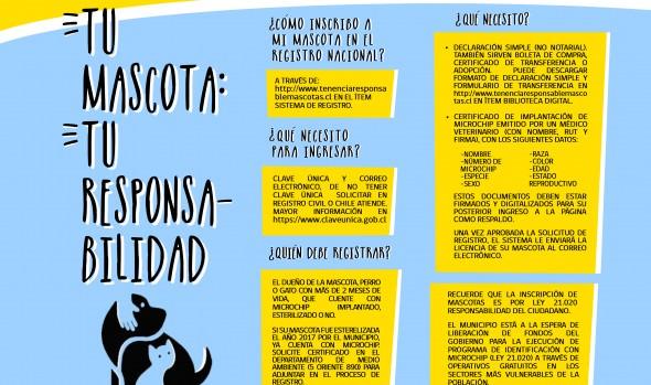 Municipio del Viña del Mar trabaja para apoyar aplicación del Registro Nacional de Mascotas