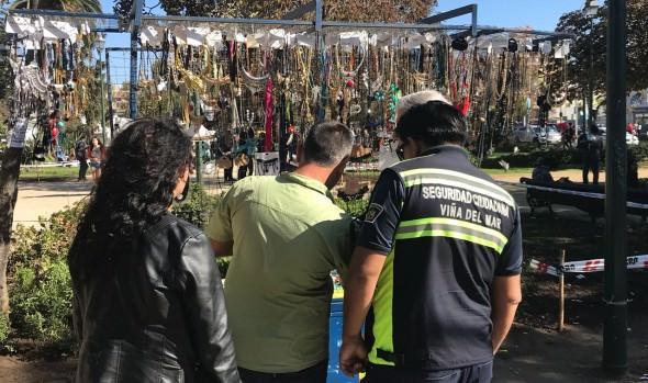 Nueva área municipal de Viña del Mar trabaja en recuperación de espacios públicos