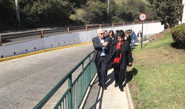 Municipio de Viña del Mar construyó acceso peatonal en paso bajo nivel de Jardín del Mar
