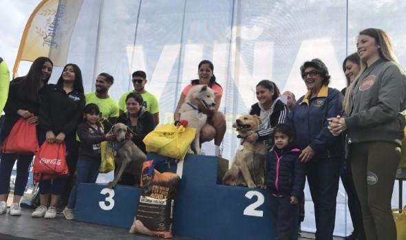 En Reñaca debutaron las perrorunning 2018, organizadas por la Municipalidad de Viña del Mar