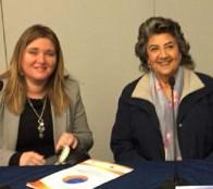 Municipalidad de Viña del Mar abordará con seremi de medio ambiente situación de vertederos a través de mesa técnica