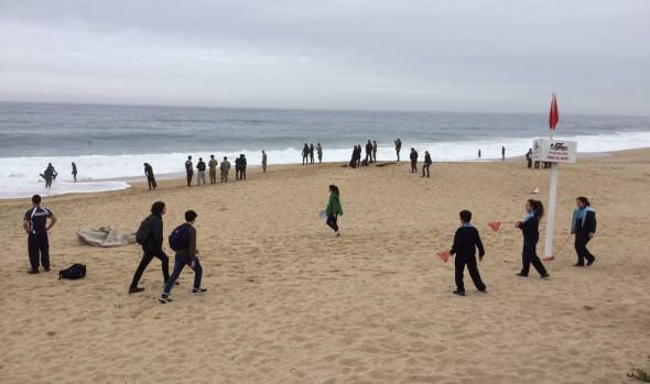 Con operativo subacuático de extracción de residuos, Viña del Mar conmemoró Día Mundial de la limpieza de playas