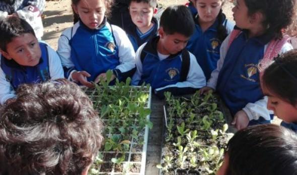 Municipio de Viña del Mar ofrece talleres para entretenerse y aprender en la celebración de la Semana de la Ciencia y Tecnología