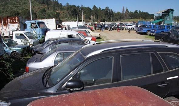 Municipio de Viña del Mar rematará 266 vehículos acopiados en parqueadero