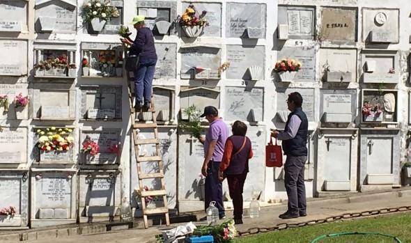 Cementerio Santa Inés de Viña del Mar está totalmente preparado para recibir a los deudos este 1 de noviembre