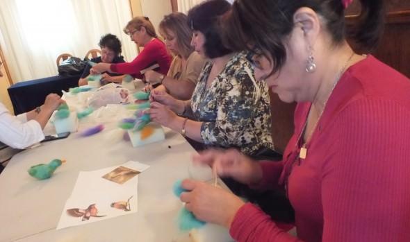 Con interesantes actividades se desarrollará en Viña del Mar el 11º Festival de Aves