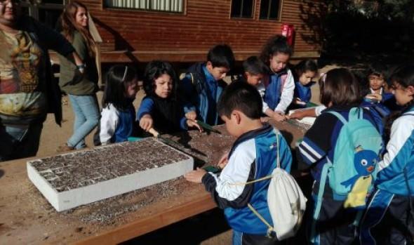 Municipio de Viña y Jardín Botánico invitan a aprender sobre hierbas medicinales y a crear huertos orgánicos