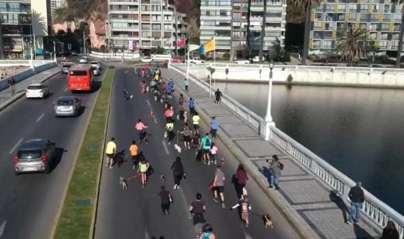 Mamás celebraron en Viña del Mar su día participando en la primera fecha de las Perrorunning 2019