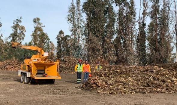 Municipio de Viña del Mar se autoabastece de tierra orgánica gracias a planta de compostaje municipal más grande de Chile