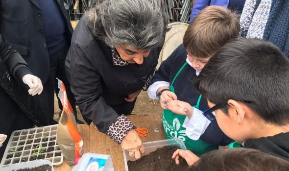 Municipalidad de Viña del Mar adjudicó programa piloto de compostaje domiciliario