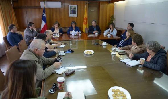 """Virginia Reginato: """"En el nuevo Chile todos tenemos que aportar"""""""