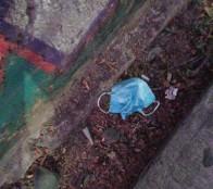 Alcaldesa Virginia Reginato denuncia desechos de mascarillas y guantes usados en la calle