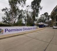 Municipio de Viña del Mar informa sobre atención por vencimiento de plazo para obtención de Permisos de Circulación