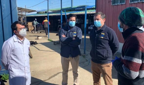 Área de salud de la Corporación Municipal de Viña del Mar inició toma de exámenes PCR en ferias libres