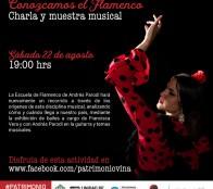Municipalidad Viña del Mar invita a un conversatorio con expertos en flamenco con baile y música