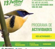 Municipalidad de Viña del Mar invita a vivir un Festival de Aves con actividades online en noviembre y a conocer importancia de los humedales