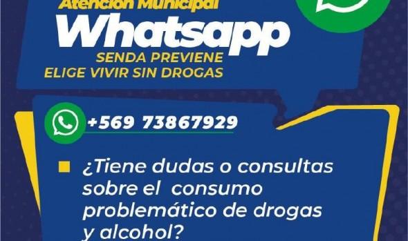 Municipio de Viña del Mar implementa plataforma de servicios comunales a través de whatsapp