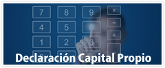 Capital Propio 2017