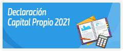 Declaración de Capital Propio
