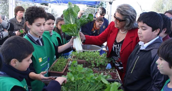 Programa educación ambiental